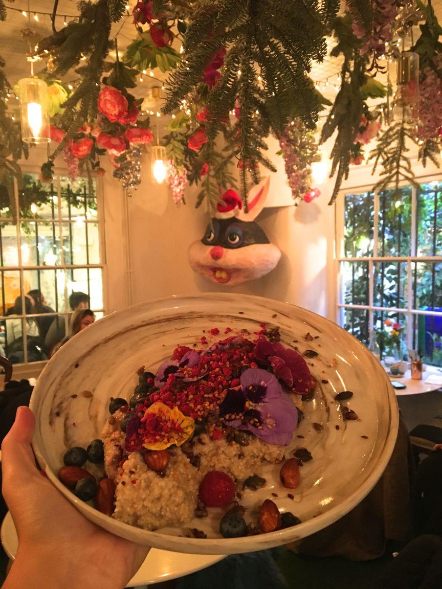 daisygreen.london.porridge
