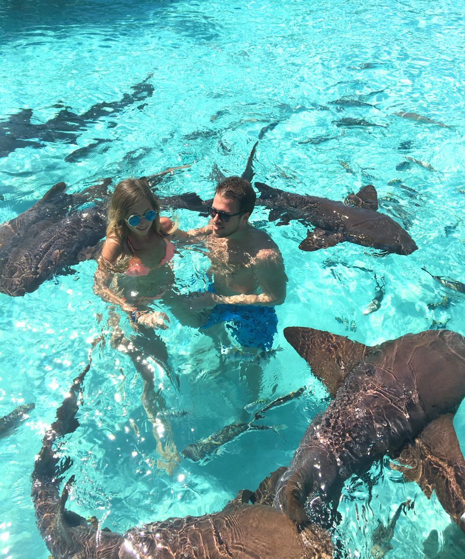 Swimming with pigs and sharks in Exuma Bahamas | Miss